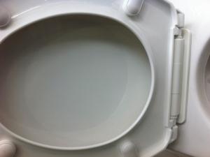 Abattant blanc watt 1000 thermo